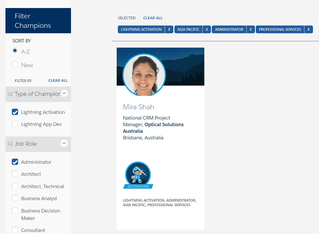Salesforce Lightning Champion Corporate Website